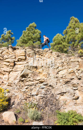Female hiker in Pine forest in mountains on Gran Canaria, Canary Islands, Spain. - Stock-Bilder
