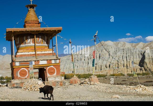 Dhawalagiri Nepal  city photo : Nepal Dhawalagiri Zone Mustang District Stock Photos & Nepal ...