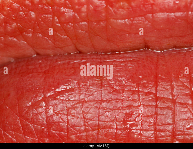 Extreme close-up of human lips - Stock Image