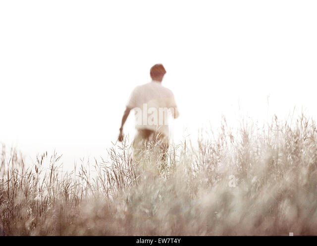 Rear view of a man in a field - Stock Image