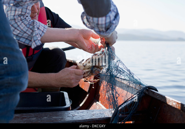 People on boat fishing for crabs, Aure, Norway - Stock Image