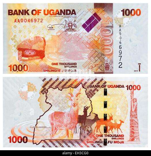 1000 shillings banknote, Antelope Kudu, Uganda, 2010 - Stock Image
