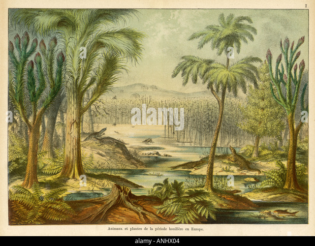 Carboniferous Lscape - Stock Image