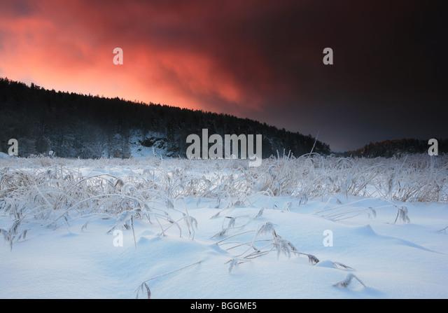Winter landscape at Evje in Rygge kommune, Østfold fylke, Norway. - Stock-Bilder