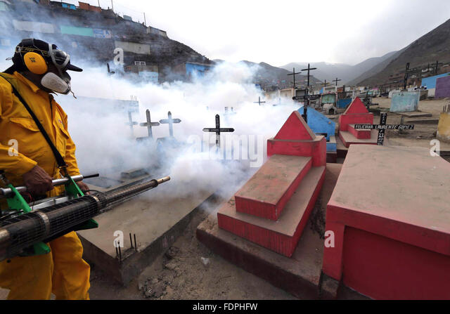 Lima, Peru. 1st Feb, 2016. A brigadier of the Ministry of Health does a fumigation in a cemetery in Lima, Peru, - Stock Image