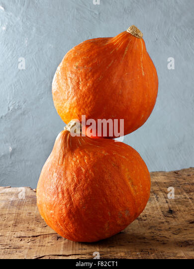 close up of whole fresh squash (  Cucurbitaceae ) - Stock Image