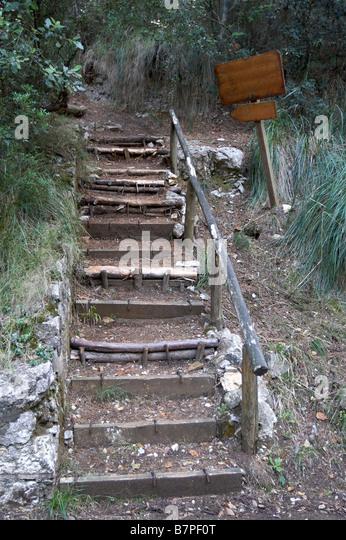 Earthen ladder - Stock Image
