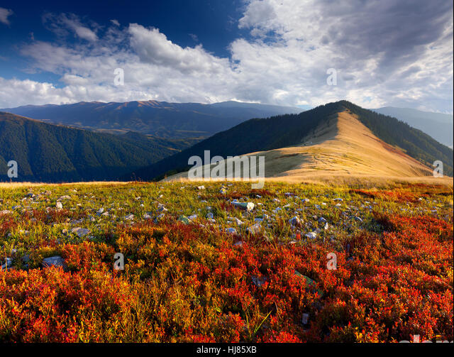 Colorful autumn landscape in the mountains - Stock Image