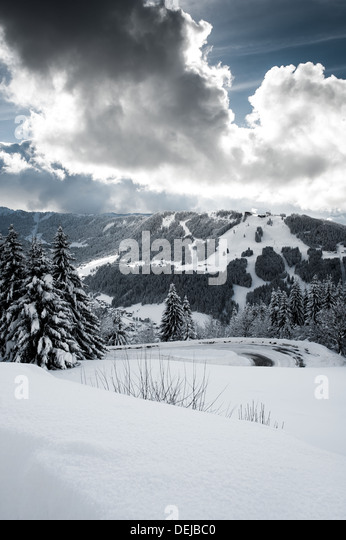 Winter scene with snow covered trees and hills with vapour trail from aeroplane in blue sky - Stock-Bilder
