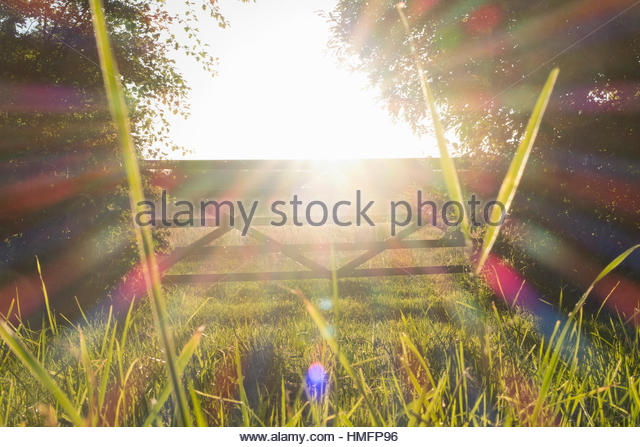 Sunset sunshine behind rural countryside summer gate - Stock-Bilder