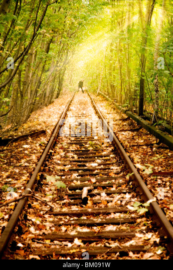 Old Rail line unused since the 80s in Berlin running through woods with a figure in the distance - Stock-Bilder