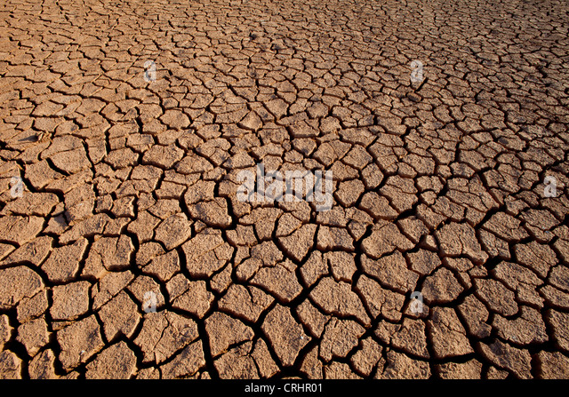 Cracked soil in Sarigua national park (desert), in Herrera province, Republic of Panama. - Stock-Bilder
