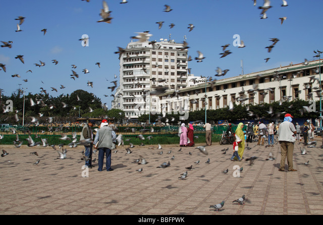 Africa, North Africa, Morocco, Casablanca, Place Mohammed V, Pigeons - Stock Image
