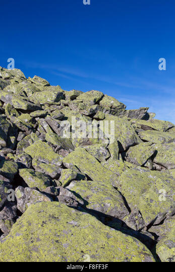 Stone run with huge boulders covered in lichen at Mount Lusen, Bavarian Forest National Park, Bavaria, Germany - Stock-Bilder