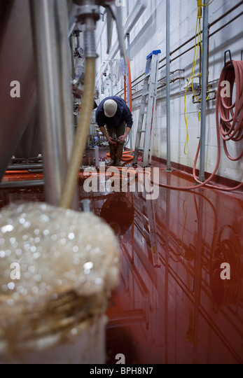 Brewer working in a brewery - Stock Image