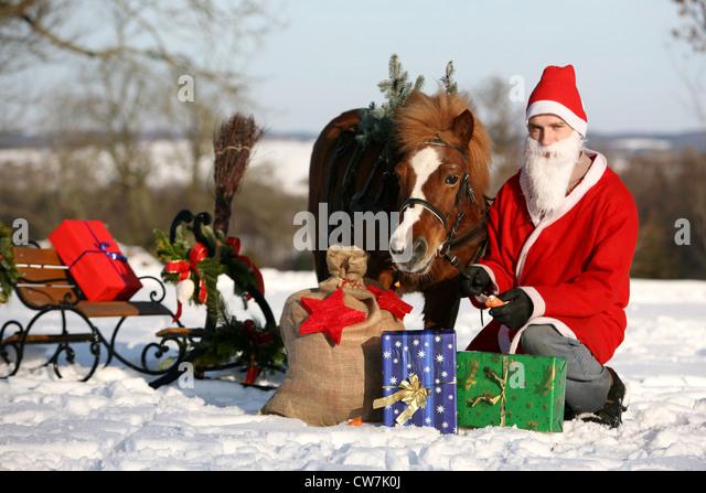 winter sledging - Stock Image