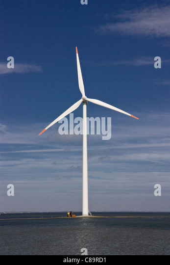Denmark, Harbore, View of wind turbine at coast - Stock Image