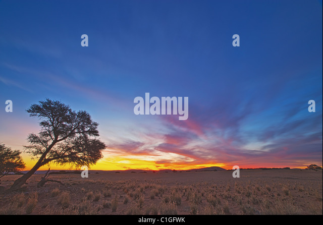 Scenic view of The NamibRand Nature Reserve - Stock Image
