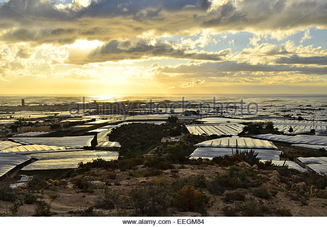 El ejido stock photos el ejido stock images alamy - El ejido almeria ...