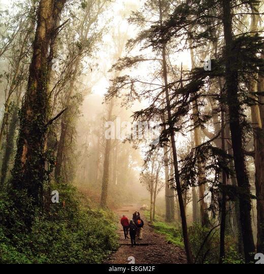 USA 94127 California San Francisco City and County San Francisco West Portal Dalewood Way Mount Davidson Park hiking - Stock Image