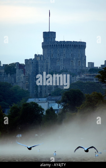 Doug Blane Winsor castle on the river Thames, with swans flying in morning mist - Stock Image