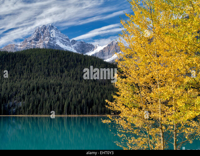 Waterfall Lakes and House Peake with fall colored aspens. Banff National Park. Alberta, Canada - Stock Image