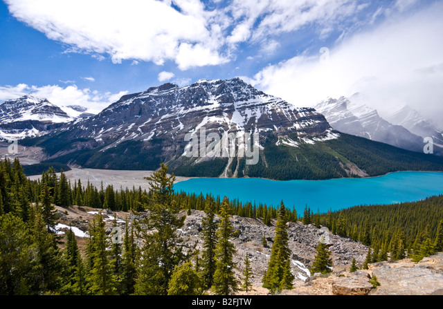 Peyto Lake viewed from Bow Summit in Banff National Park Canada on a sunny June date - Stock Image