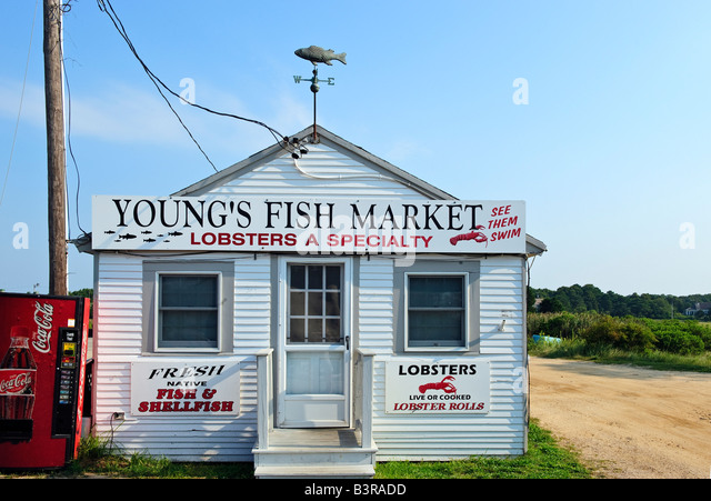 Rock lobster stock photos rock lobster stock images alamy for Cape cod fish market