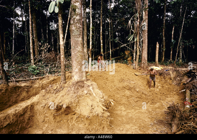 deforestation due to digging for gold peru - Stock Image