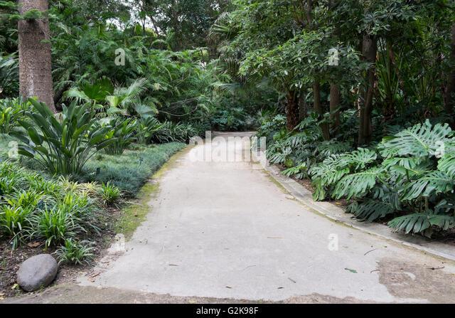 Botanical garden la concepcion stock photos botanical for Jardin botanico de malaga