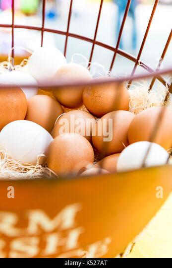 brown eggs, farmers market,eggs - Stock Image