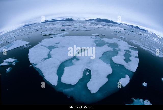 Norway, Svalbard, Arctic Pack Ice, Spitsbergen,  Fisheye lens - Stock Image