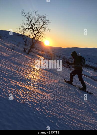 Woman climbing a mountain in Hardangervidda national park on snoshoes during sunset - Stock Image