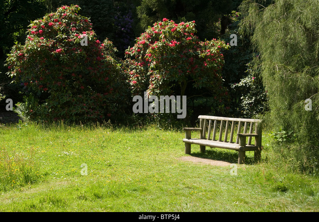 Bench in Garden, Wiltshire, UK. - Stock Image