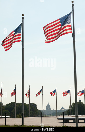 American flags and capitol building, Washington DC, USA - Stock-Bilder