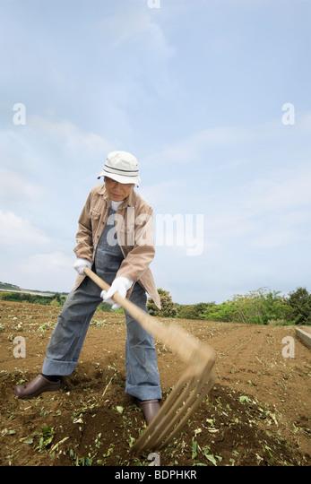 Senior man plowing field - Stock Image