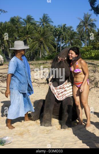 Female tourist cuddling baby Asian elephant on Phuket's Mai Khao beach - Stock-Bilder