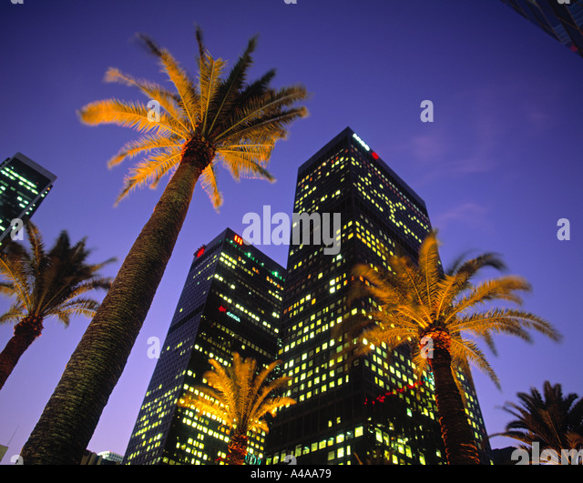 Palms & Office Buildings, Downtown LA, USA - Stock-Bilder