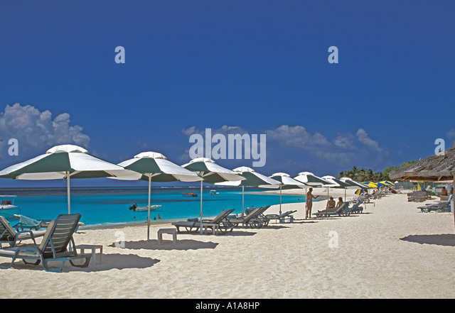 Anguilla beach West Shoal Bay beach line of beach umbrellas and beach chairs - Stock Image