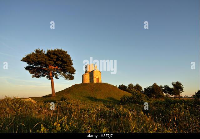 Tree and Romanesque St. Nicolas Church located on earthen hill in fields of Prahulje near Nin in Dalmatia, Croatia, - Stock Image
