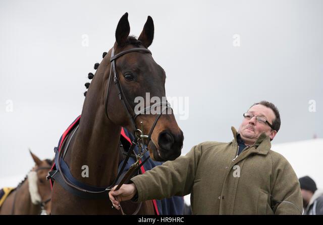 Badbury Rings Horse Racing