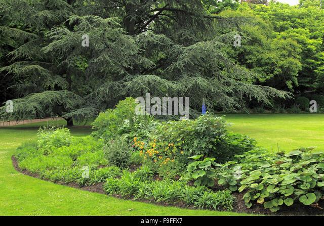 Jardin du luxembourg paris france garden stock photos for Bd du jardin botanique 50