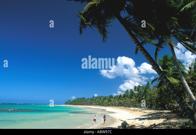 Tropical Beach couple walking in the surfline blue sky long line of palm trees las galeras samana province dominican - Stock Image