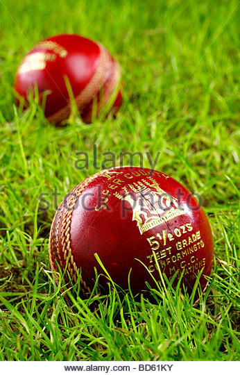 Two cricket balls in grass - Stock Image