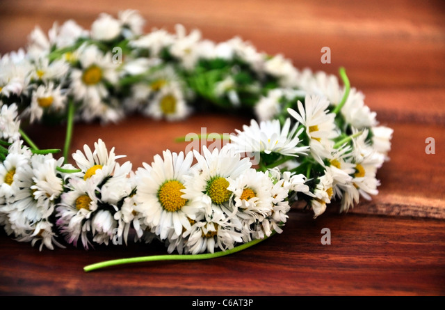 Wreath braided from daisies, a daisy chain - Stock Image