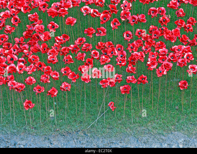 Detail of Blood Swept Lands and Seas of Red poppies, at The Tower of London, England UK - Stock Image