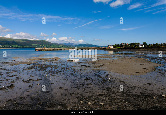 Beach and harbour at Carlingford with the tide out - Stock Image