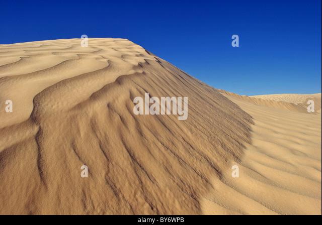 Sand dunes in the Sahara desert (Great Eastern Erg) near Douz, Tunisia - Stock Image