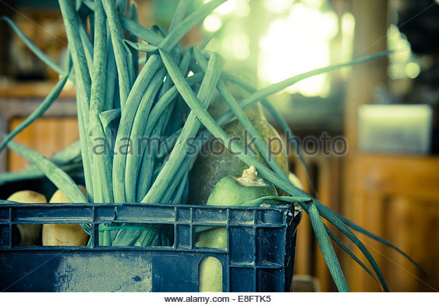 Costa Rica, Finca, View of organic vegetables in basket - Stock Image