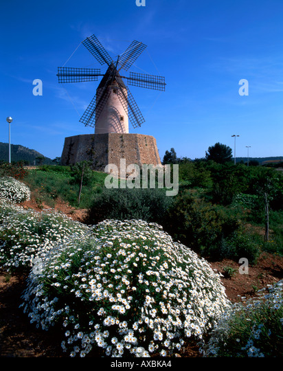 Spain Mallorca windmill spring - Stock Image